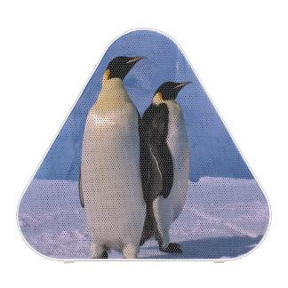 La Antártida, territorio antártico australiano, 7 Altavoz Bluetooth