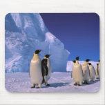 La Antártida, territorio antártico australiano, 7 Alfombrillas De Raton