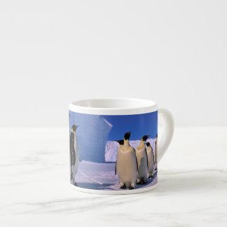La Antártida, territorio antártico australiano, 7 Taza Espresso