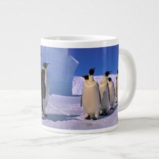 La Antártida, territorio antártico australiano, 7 Taza Grande