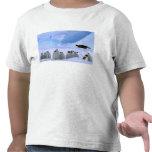La Antártida, territorio antártico australiano, Camisetas