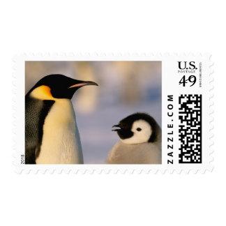La Antártida, territorio antártico australiano, Sello Postal