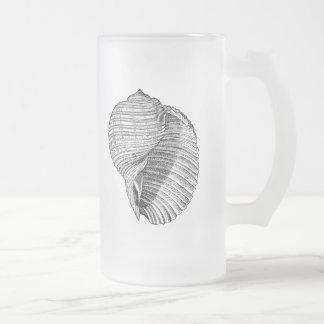 La antigüedad del Seashell del vintage descasca la Taza De Cristal