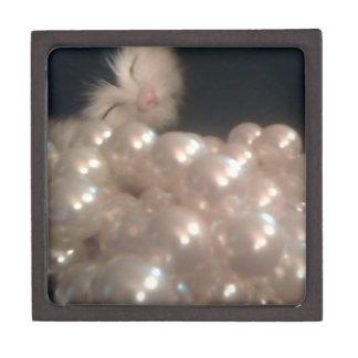 La antigüedad retra del gatito de la piel del vint cajas de joyas de calidad