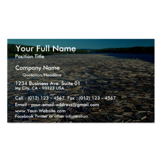 La apertura de sesión del río Fraser, Columbia Bri Plantilla De Tarjeta Personal