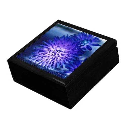 La araña azul de neón Disbuds Giftbox Joyero Cuadrado Grande