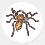 La araña pegatina redonda
