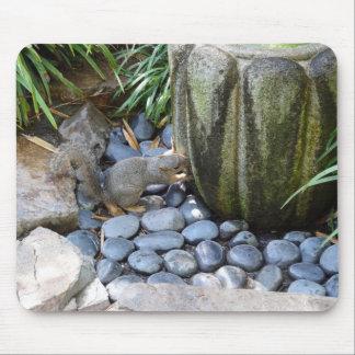 La ardilla bebe el cojín de ratón japonés de la tapete de ratones