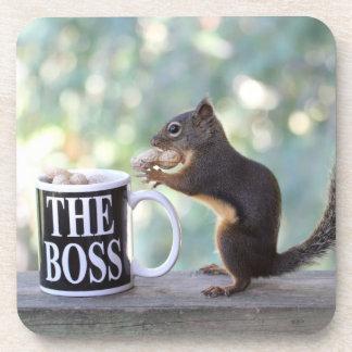 La ardilla de Boss Posavasos De Bebidas