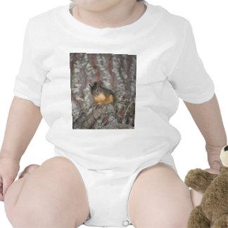La ardilla de Douglas, cascadas de Oregon Traje De Bebé