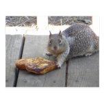 La ardilla roba la tostada francesa tarjeta postal