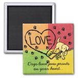 La arena amarilla de Labrador pone letras al mosai Iman De Nevera