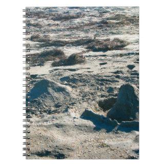 la arena se escuda terrones en la playa de la libros de apuntes