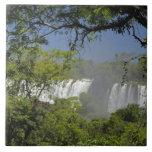 La Argentina, Iguacu cae en sol. 2 Azulejos Ceramicos