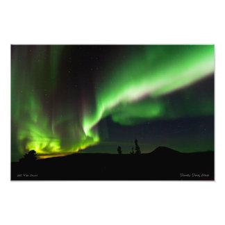La aurora Borealis sobre la bóveda de Donnelly Fotografías