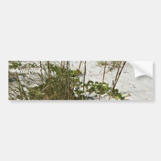 La avena del mar y la otra vegetación de la playa etiqueta de parachoque