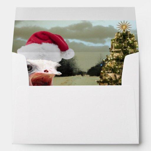 La avestruz consigue emocionada sobre navidad
