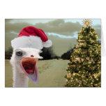 La avestruz consigue emocionada sobre navidad tarjetón