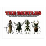 La AYUDA de los escarabajos Postal