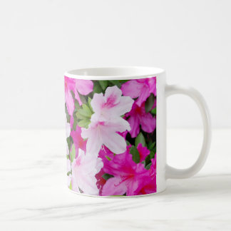 La azalea rosada y rosa clara florece la taza