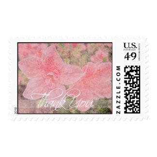 La azalea texturizada le agradece franqueo sello postal