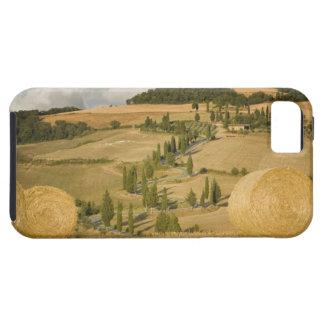 La bala y el balanceo de heno ajardinan, Toscana, iPhone 5 Fundas