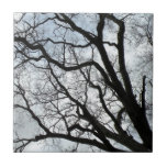 La baldosa cerámica de las venas del árbol azulejos