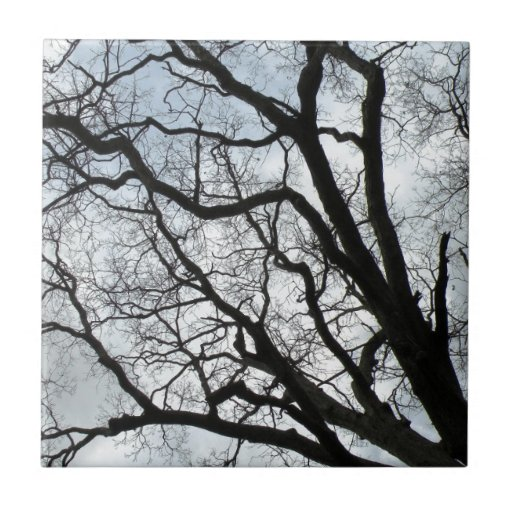 La baldosa cerámica de las venas del árbol azulejo cuadrado pequeño