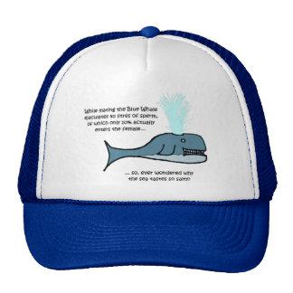 La ballena azul… gorras de camionero