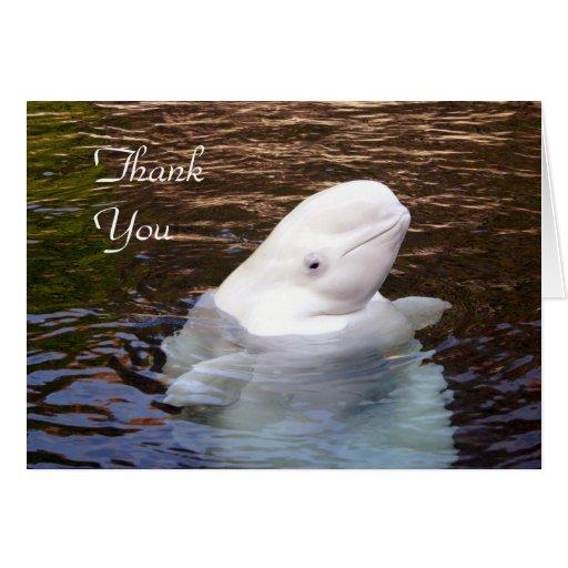 La ballena de la beluga le agradece cardar felicitacion