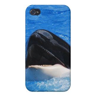 La ballena suena el caso del iPhone 4 iPhone 4 Protector