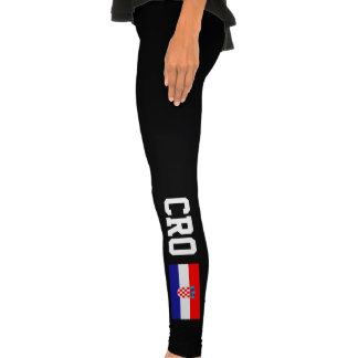 La bandera croata se divierte orgullo de la CRO (C