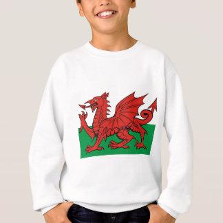 La bandera Galés, lo lleva con orgullo Poleras