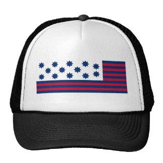 La batalla americana de la bandera del tribunal de gorros