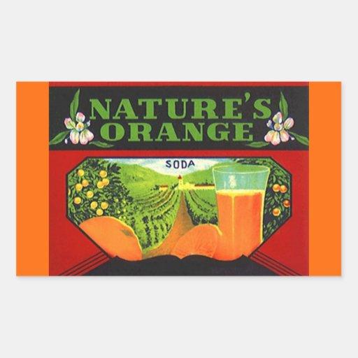 La bebida anaranjada de la naturaleza de la rectangular pegatina
