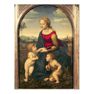 La Belle Jardiniere, 1507 Postcard