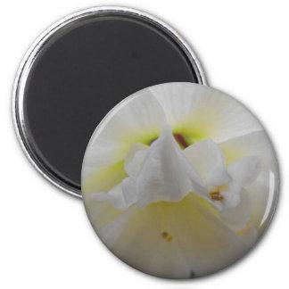 La belleza de flores imán redondo 5 cm
