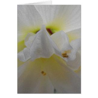 La belleza de flores tarjeta de felicitación