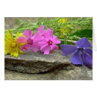 La belleza de la primavera felicitacion