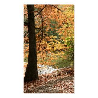 La belleza de la señal del otoño tarjetas de visita