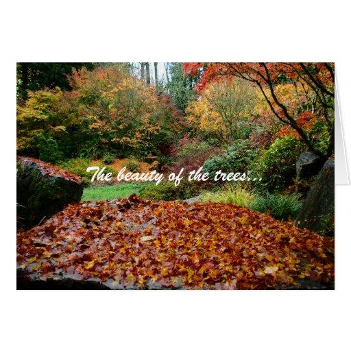 La belleza de los árboles… felicitacion