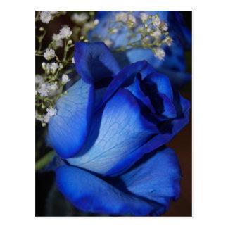 La belleza del azul tarjeta postal