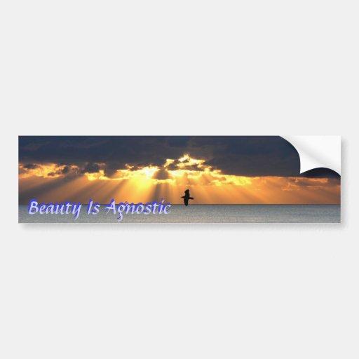 La belleza es agnóstica pegatina para auto