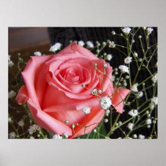 La belleza es una color de rosa posters