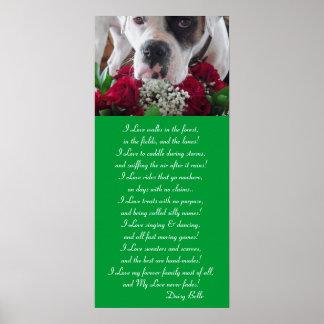 ¡La belleza y los rosas de la margarita del poster