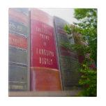 La biblioteca céntrica de Kansas City reserva el p Azulejo Ceramica