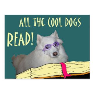 La biblioteca - samoyedo - los perros frescos leyó postales