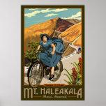 La bicicleta del Mt. Haleakala monta Hawaii Impresiones