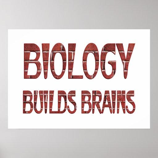 La biología construye cerebros poster