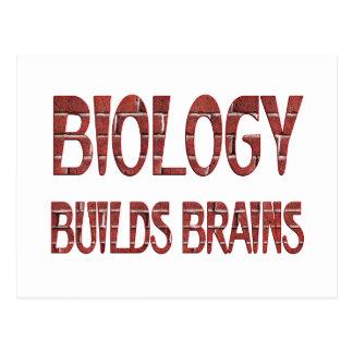 La biología construye cerebros tarjeta postal